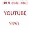HR non drop fastest yt views cheapest