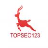 TOpseo123
