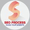 SeoProcess