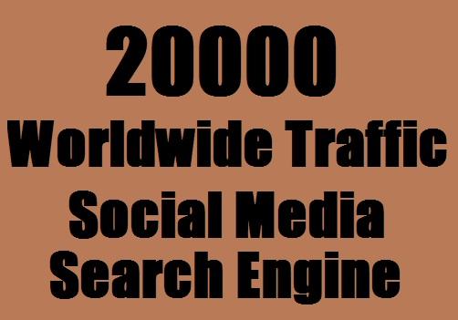 20000 Web Traffic Worldwide for 7 days