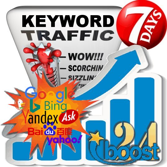 Daily search engine keyword visitors to your Website for 7 days