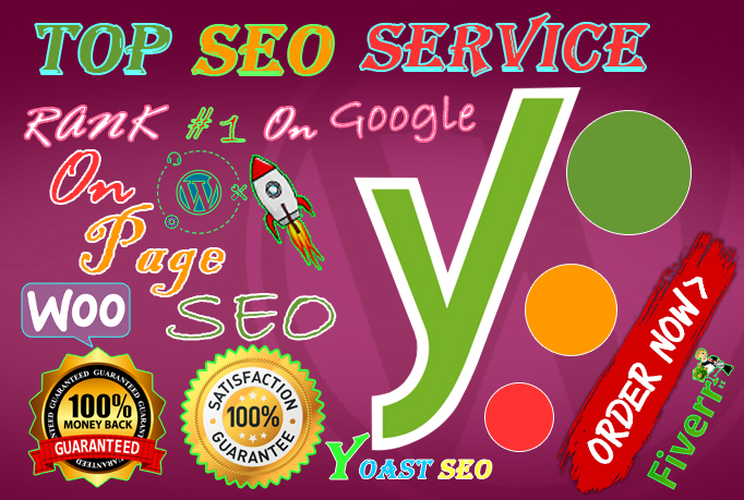 I will do professional on page SEO and 5 page WordPress website google top ranking