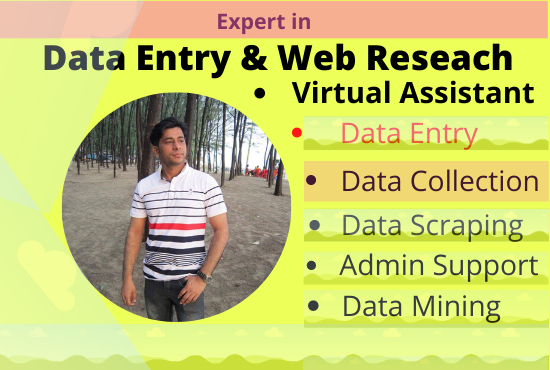 I Will Do Accurately Data Entry And Web Research