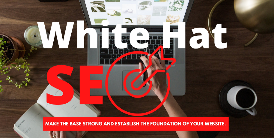 Latest White Hat SEO Link Building - Most Powerful Strategy Used To Build Authority To Your Website