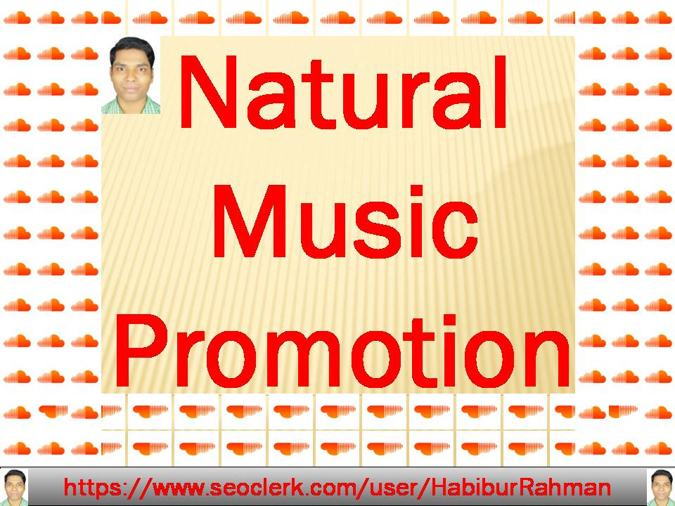 I will make your song bigger through natural work to natural music promotion Audio & Music