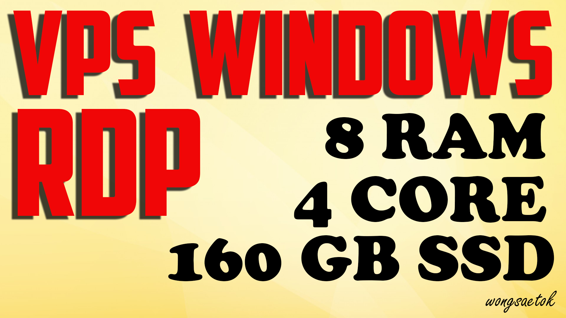 VPS RDP Windows 8 GB RAM 4 Core 160 GB SSD FOR SEO TO...
