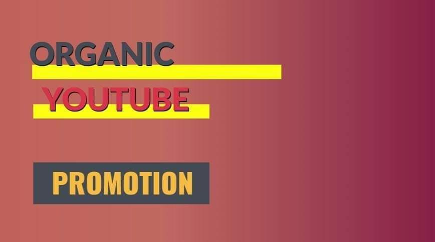 Instantly Youtube Video Promotion via social media marketing promotion