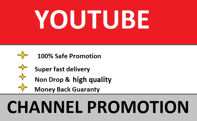 I will Manage your YouTube Profile and make it popular,  free consultation 24 hours