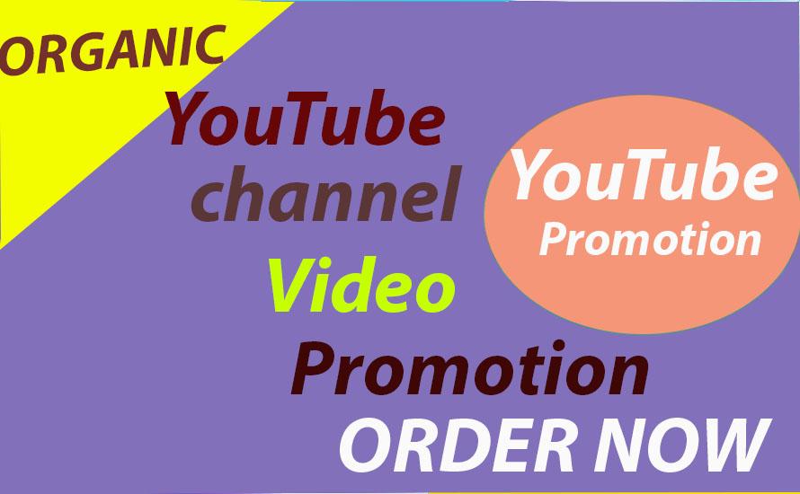 Do Amazing YouTube Promotion & Social Media marketing