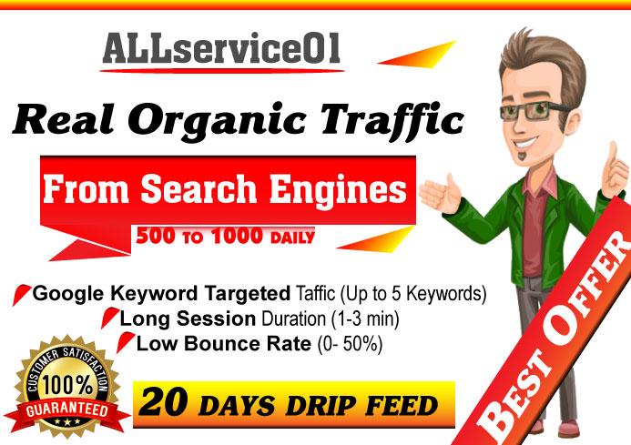 Organic Keywords Targeted GOOGLE Search Engine Traffic