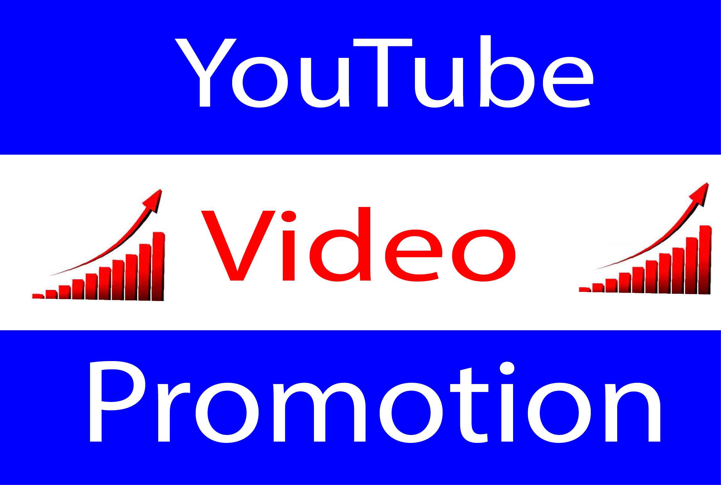 Video Promotion Custom Comments Real User
