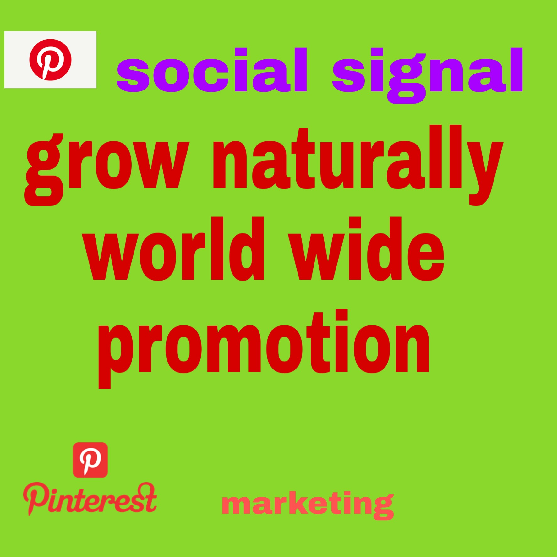 100+ naturally grow world pinterest promotion non drop with fast delivery