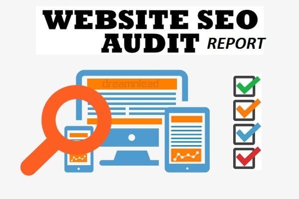 Will Manually Do Technical Audit Of Your Website And Gives Recommendations For Improvement