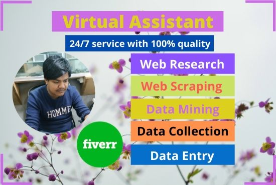 best virtual assistant,  data entry and web research