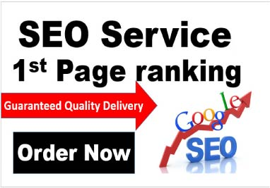 Guaranteed 1st page rank SEO Service Google safe, must rank, get more traffic and sales