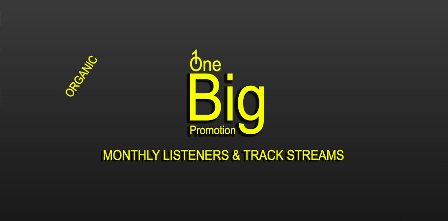 Increase Monthly Listeners And Track Streams Promotion