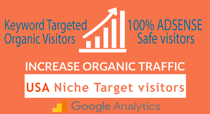 1500 USA Visitors Daily For 30 Days From Niche Targeted Organic Traffic From Google