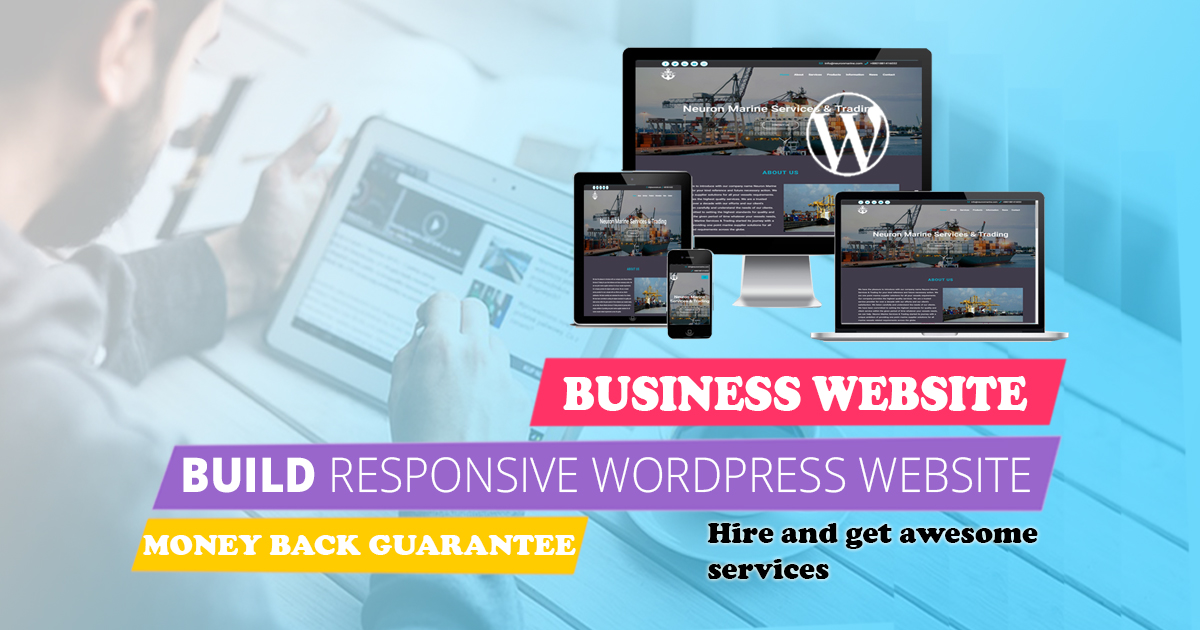 I will build a professional WordPress business website