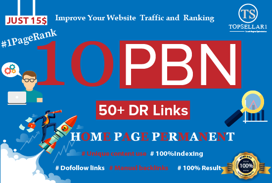 Make 50+Dr Links Homepage Permanent 10 PBN Backlinks 1 Page Ranking
