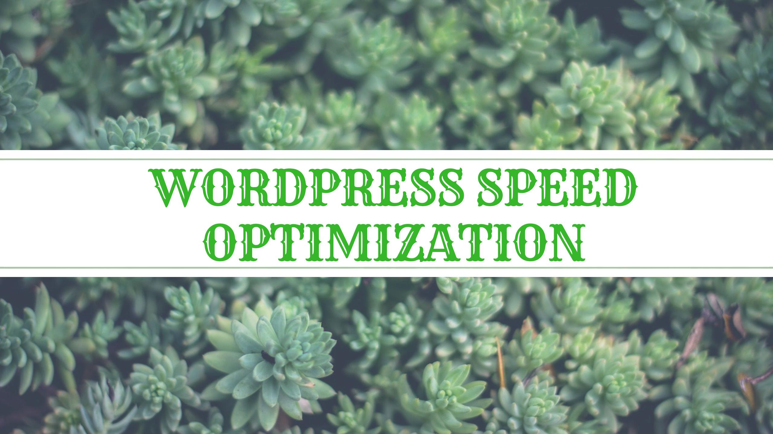 Wordpress Speed optimization,  Boost up your WordPress site performance