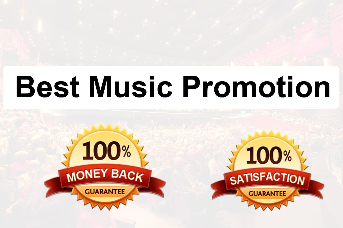 Fast Organic Viral Music Promotion
