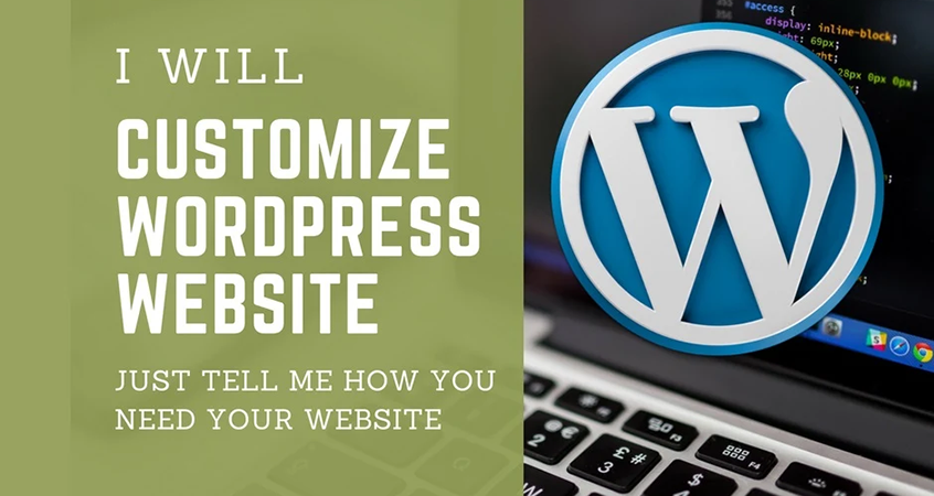 Do WordPress Customization Professionally
