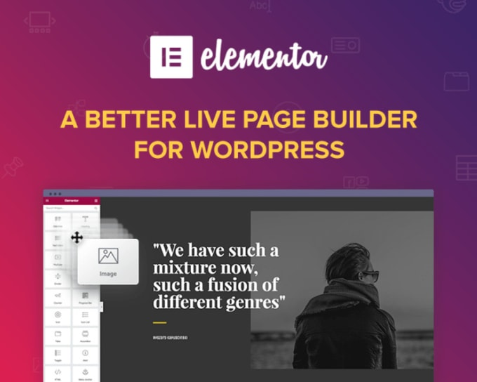 I will build a landing page or wordpress website with elementor pro