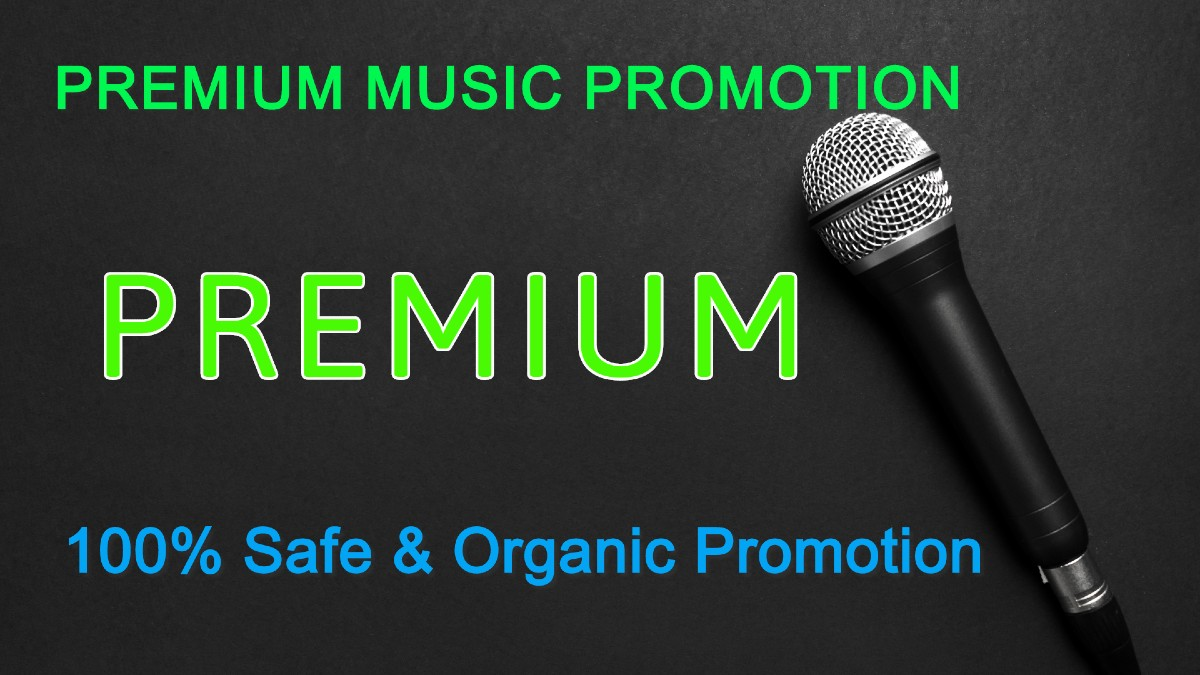 I'll Do Manually Music Promotion For You