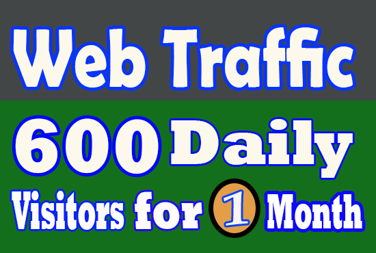 20000 Real Visitors USA Organic Real Quality Website Traffic