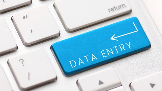 Any type of type writing data entry for your project ...