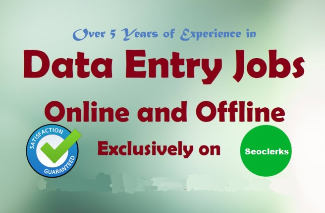 I will do excel data entry, copy paste, typing and offline data entry jobs