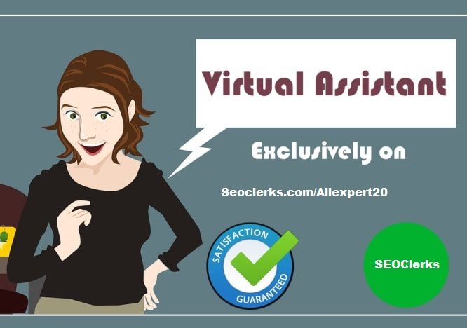 I will do excel data entry, personal and professional virtual assistant