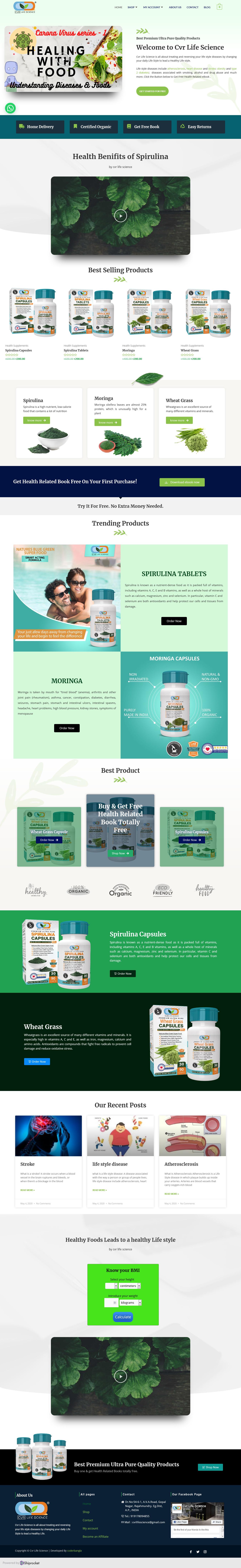 I'll Build SEO Friendly eCommerce Website