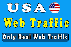Promote Your Product In High 120,000 Real Traffic From twitter instagram facebook linkedin for