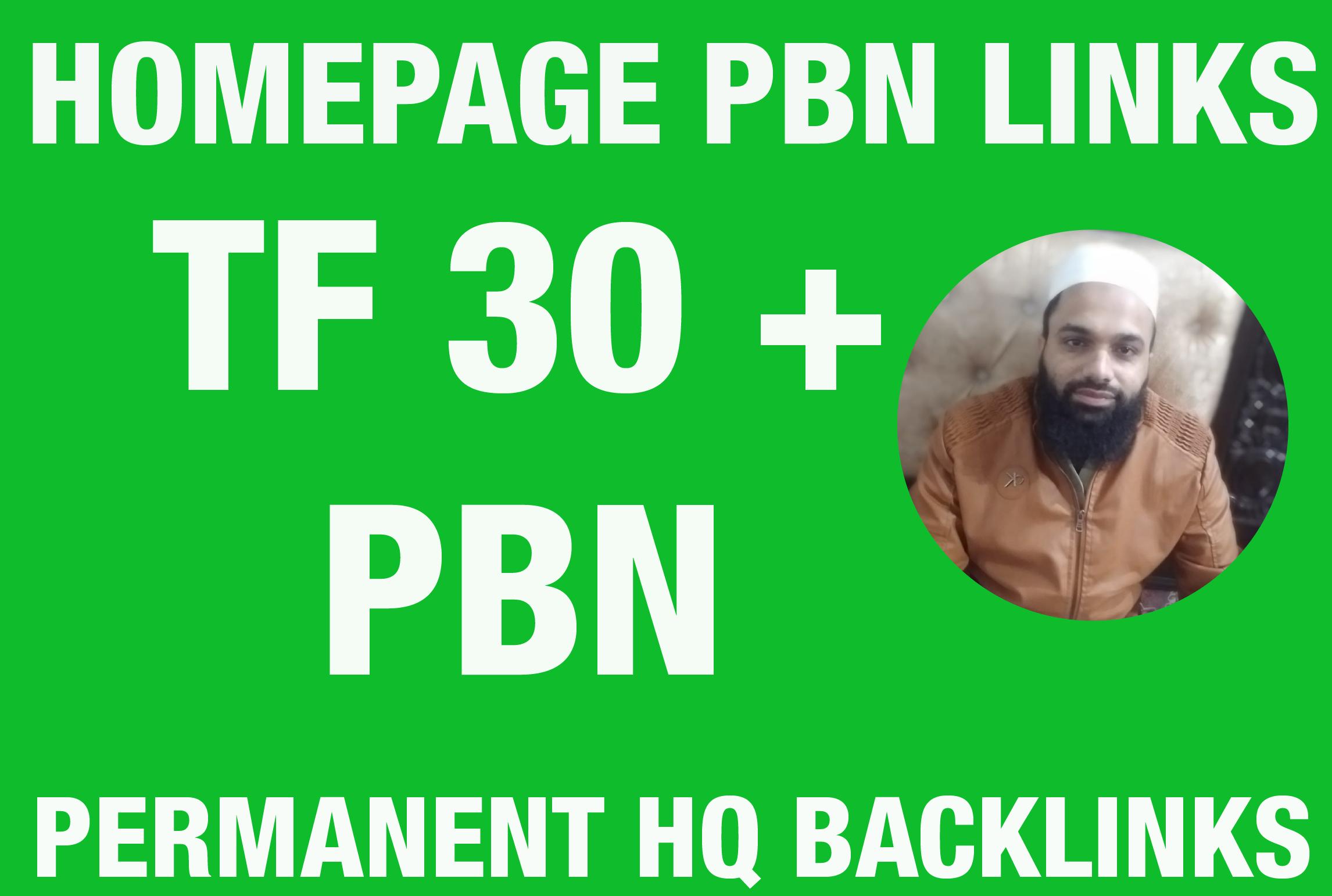 I will Provide TF 20 Plus 50 Homepage PBN Backlinks