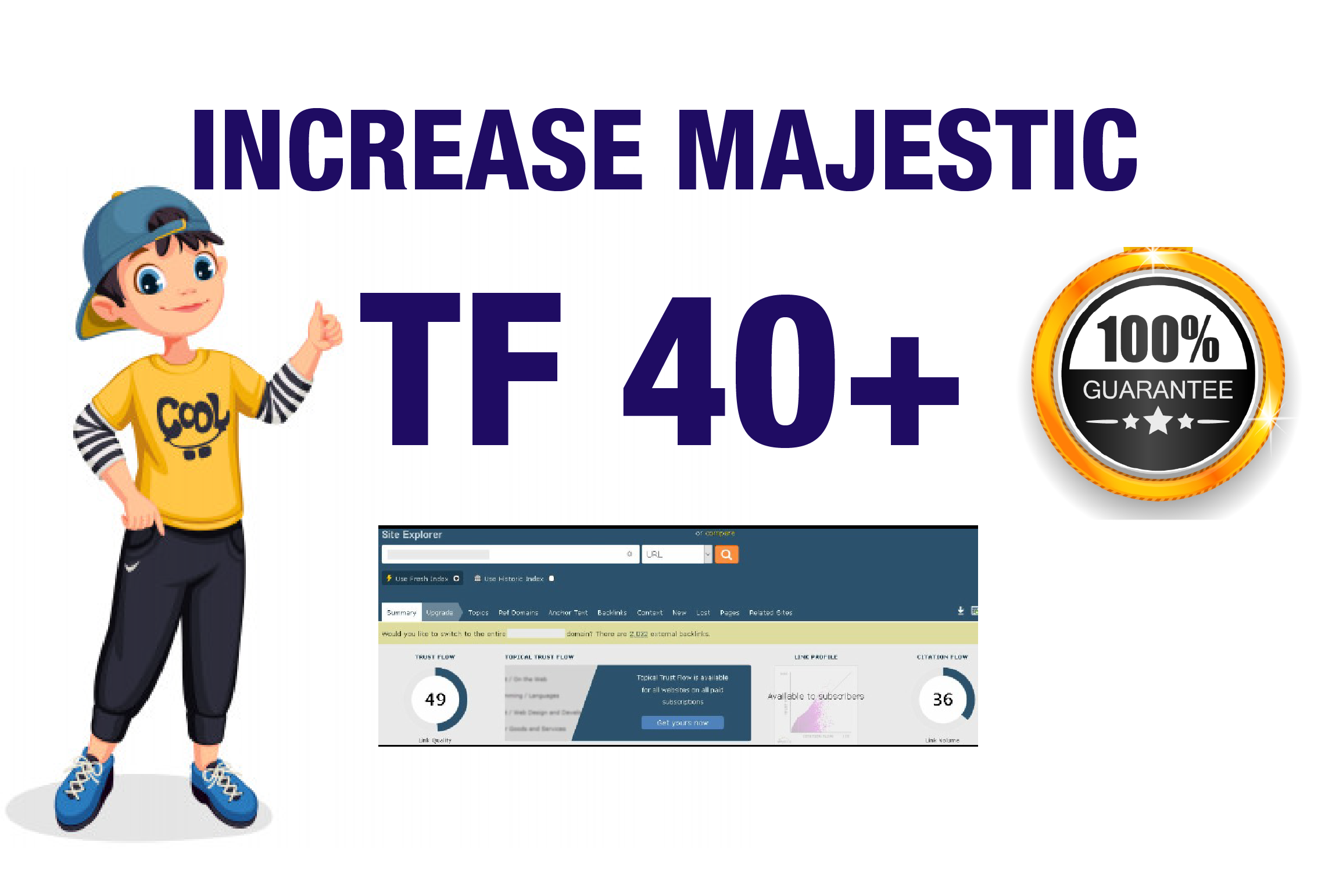 I will help you to increase Website URL majestic Trust Flow 30 plus
