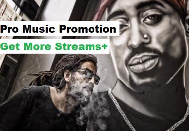 Streams For your Track Pro Music Promotion