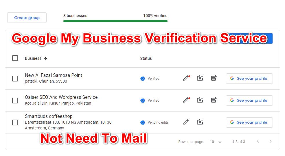 Google My Business Verication Service