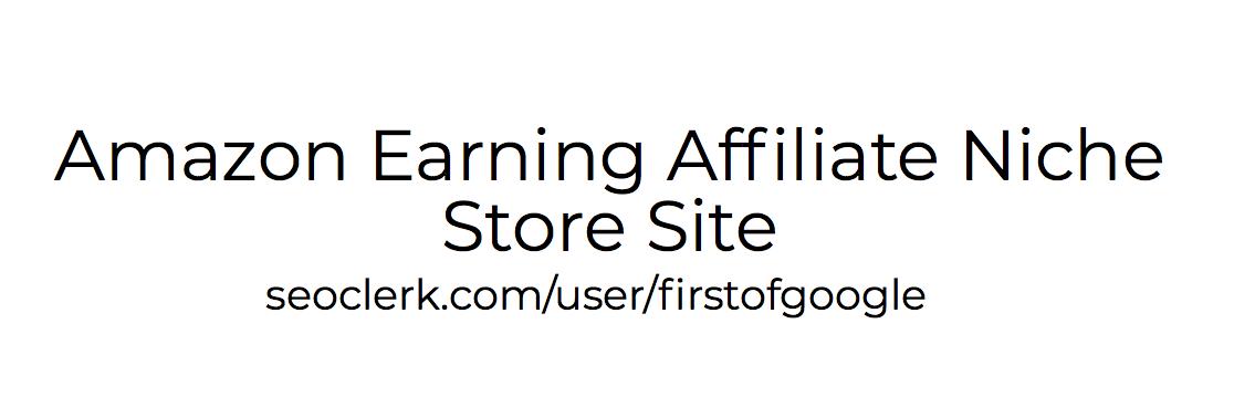 Amazon Earning Affiliate Niche Store Site