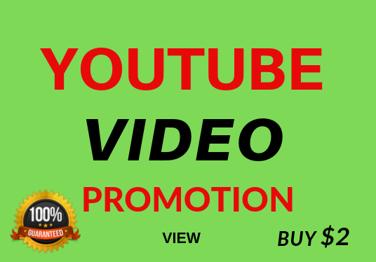 Fast Video Views Non Drop Lifetime Refill Guarantee