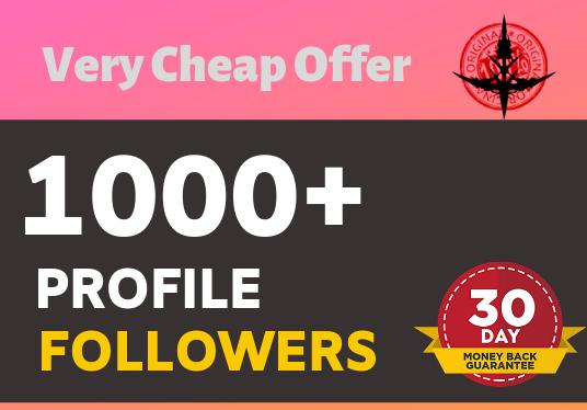 Add 1000+ Non Drop Super Fast profile followers