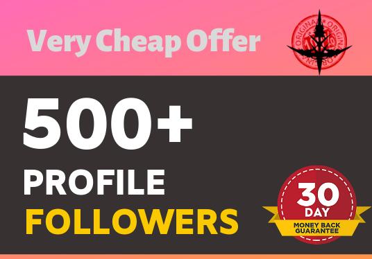 Add 500+ Non Drop Super Fast profile followers