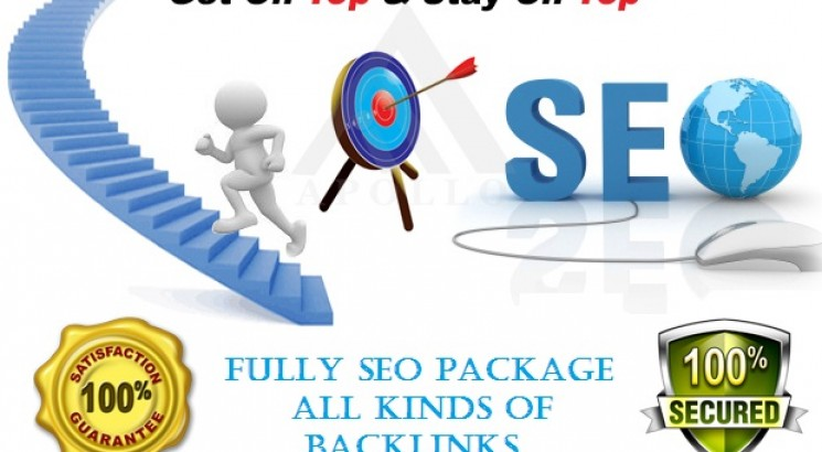 Build 50 PBN DR 50+ homepage parmanent backlinks