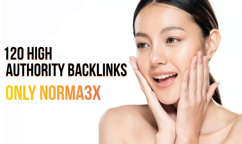 I will create 120 High Authority Backlinks and add links