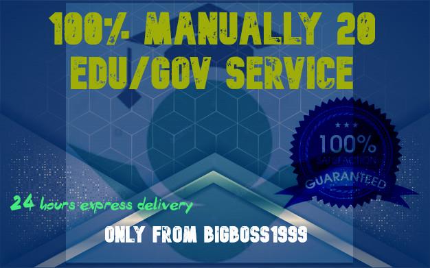 I Will Manually do 20 EDU/GOV Profile backlinks with High DA