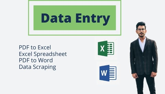 I will Enter your Data on Microsoft Word and Microsoft Excel.
