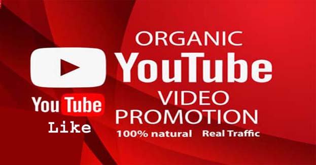 Video promotion service super fast delivery