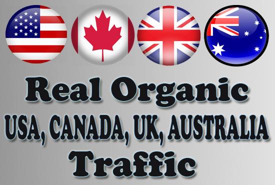 Real And Safe Google Organic Visitors USA,  CANADA,  UK,  AUSTRALIA Traffic