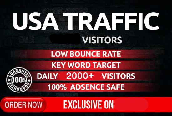 I will drive safe organic targeted USA traffic