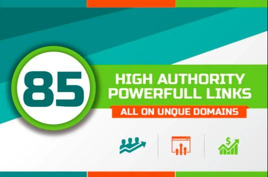 I will provide 85 unique domain do follow backlinks DA 30Plus